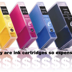 Why are printer ink cartridges so expensive