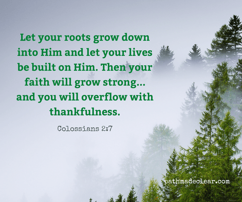 Let your roots grow down into Him and let your lives be built on Him. Then your faith will grow strong in the truth you were taught, and you will overflow with thankfulness.