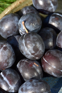 Stanley Plum fruit