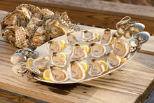 Load image into Gallery viewer, misty points, misty point, oyster, oysters, fresh oyster, virginia oyster, oysters delivered, filet mignon