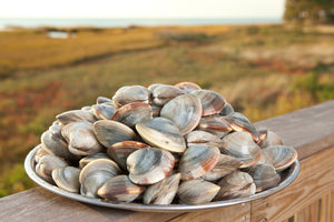 Clams: They're Grit-Free!