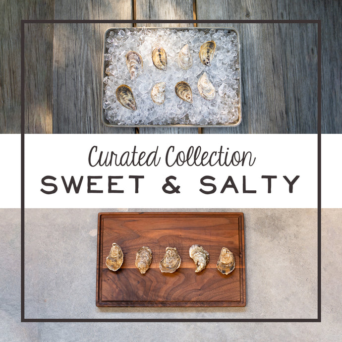 oyster, oysters, oyster sampler, misty point, chincoteague salt, collection, curated collection