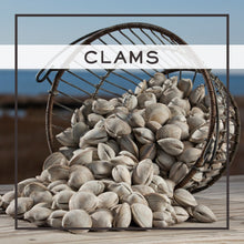 Load image into Gallery viewer, clams, grit-free clams, littleneck, middleneck, littlenecks, middlenecks