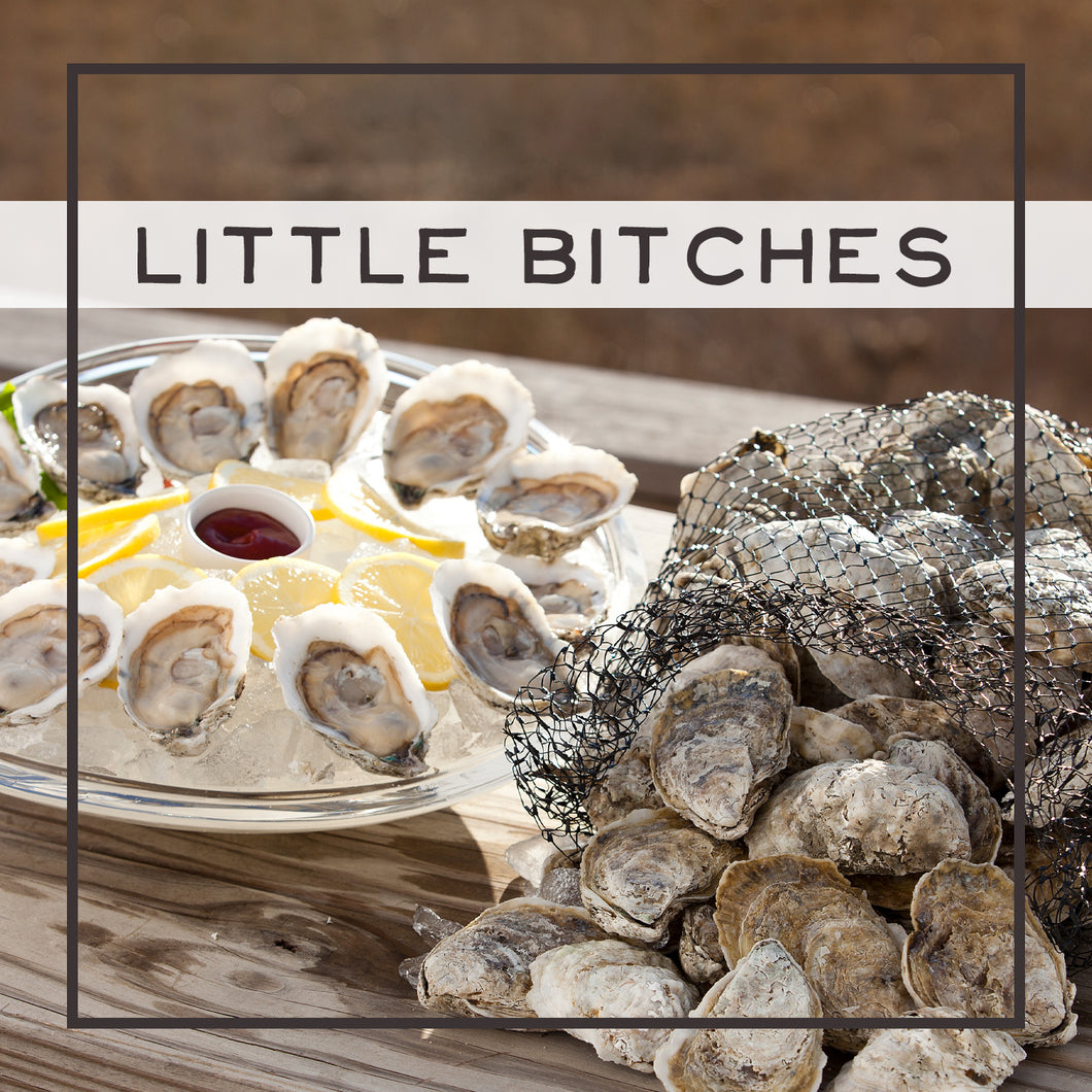 Little Bitches: Our Neediest Oyster