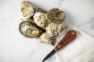 misty points, misty point, oyster, oysters, fresh oyster, virginia oyster, oysters delivered, filet mignon