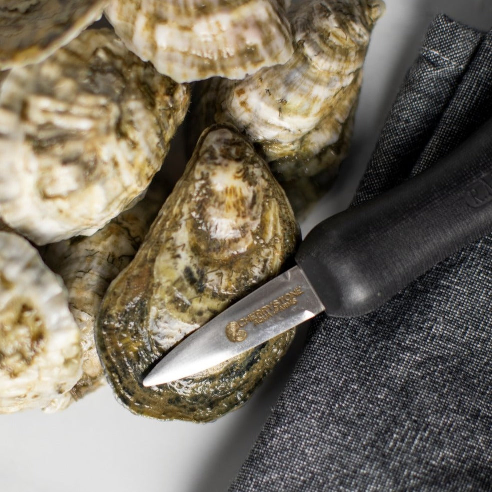 oyster knife, oyster opening knife