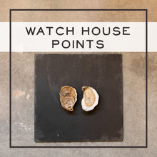 Load image into Gallery viewer, Watch House Points: Our Historic Oyster