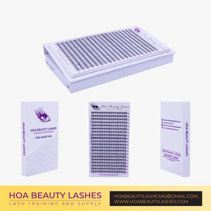 Hoabeautylashes - Pre-Made Fan