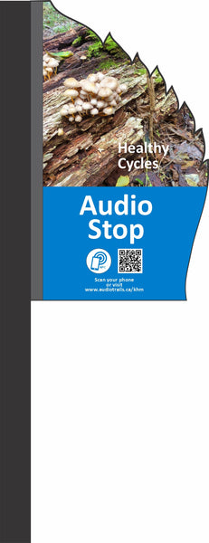 Audio Tour Package - Premium