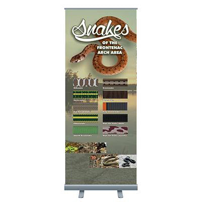 Economy Bannerstand