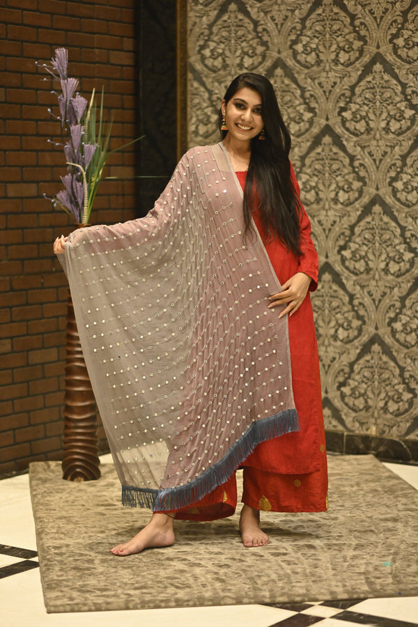 Women's Small Mirror Embroidered Chiffon Dupatta
