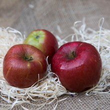 Load image into Gallery viewer, lifestyle shot of 3 braeburn apples