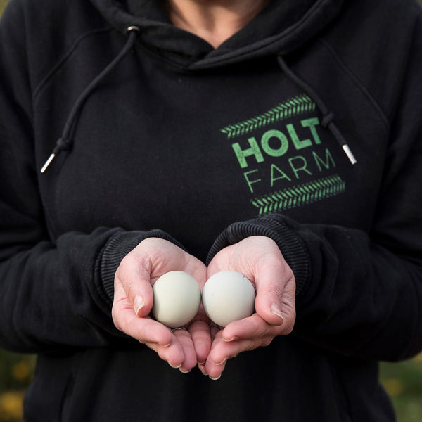 free range eggs in hands