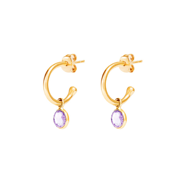 Gold Birthstone Hoop Earrings with Amethyst - Lulu B Jewellery