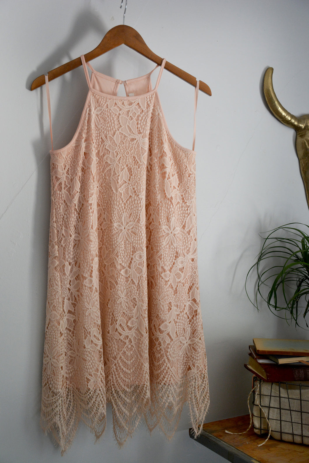 Soft Pink Lace & Fringe Cocktail Dress by Love, Fire