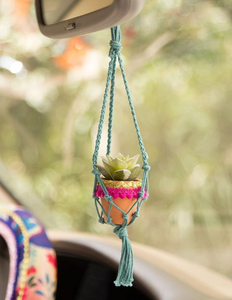 Assorted Colors Mini Macrame Hanging Succulent