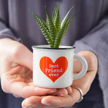 Load image into Gallery viewer, Mini Mug Succulent