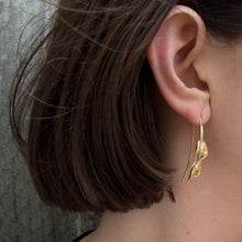 Kowhai seed pod Earrings