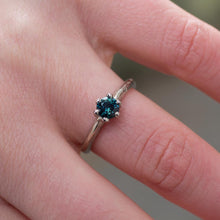 Pura ring - 14ct white gold, set with a 5mm teal Australian Sapphire