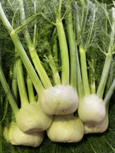 Fennel | 1 each