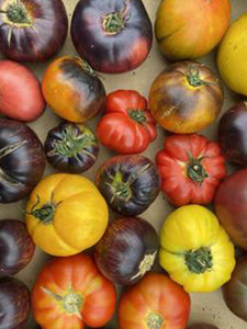 Tomato (Heirloom) | Half kg