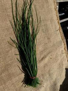 Herbs (Chives) | 1 Bunch