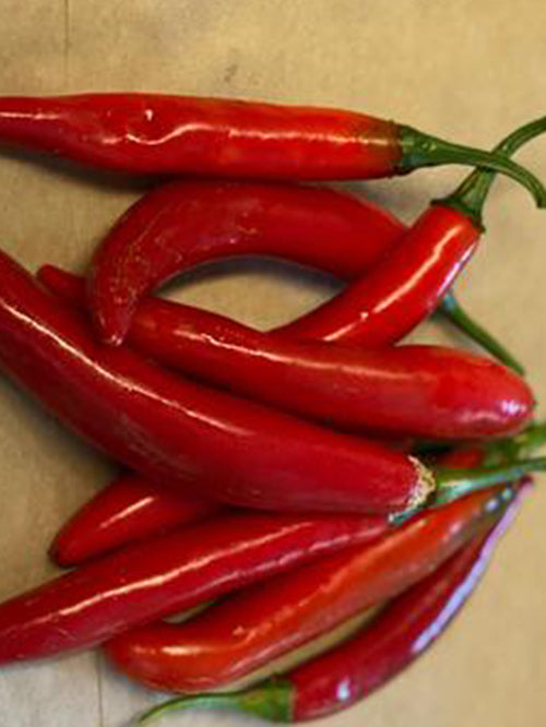 Chilli (Long, Red) | 3 for $1