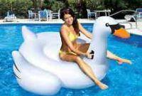 Giant Swan Ride-On