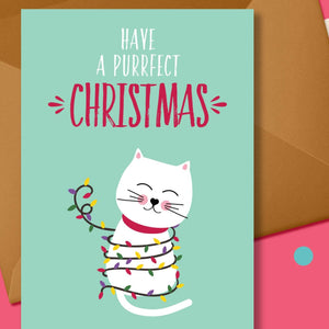 Cat in festive lights Christmas Card - Blush and Blossom - Christmas Greetings