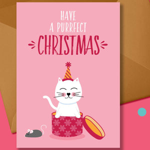 Cat in a box Christmas Card - Blush and Blossom - Christmas Greetings