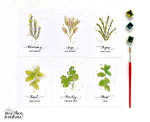 Herb/Plant Notecards - Now Then Sunshine - postcard pack - gardening lovers