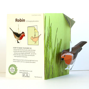 Pop Up Greetings Card - Robin - Faye Stevens Design - Papercraft