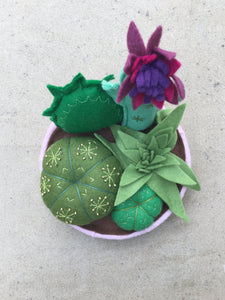 Felt Cactus garden - fun, funky and cute everlasting plants!