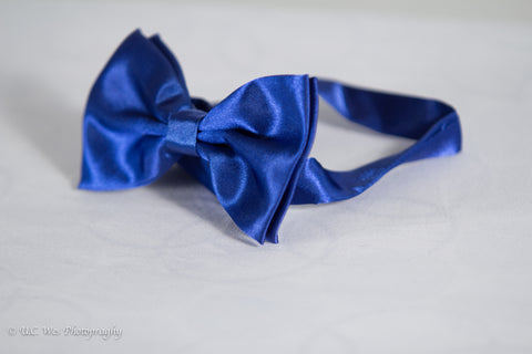 Royal Blue Formal Dress Fancy Bow Tie