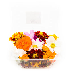 MIX DE FLORES COLOR 50g