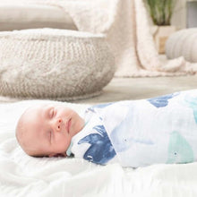 Load image into Gallery viewer, Aden & Anais Silky Soft Extra Large Muslin Cotton Swaddles: 4 CHOICES