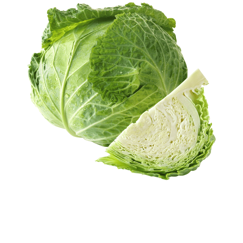 Cabbage, Green - Pepper Pantry