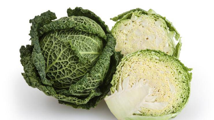 Cabbage, Savoy - Pepper Pantry