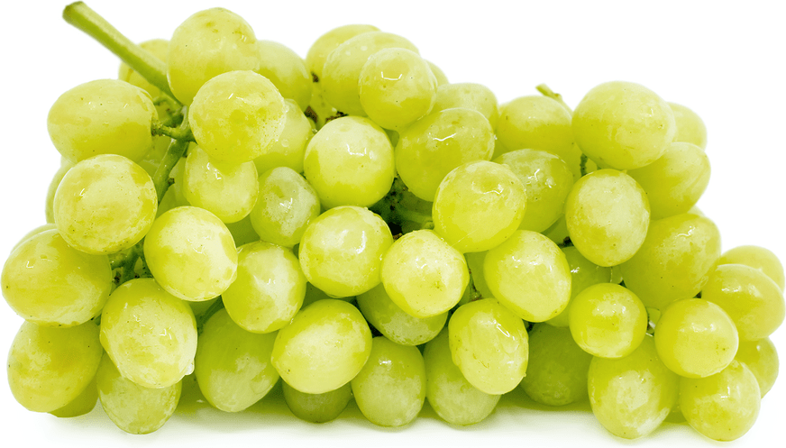 Grapes, Green Seedless - Pepper Pantry
