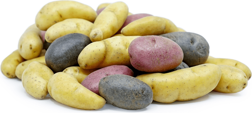 Mixed Color Fingerling Potatoes - Pepper Pantry