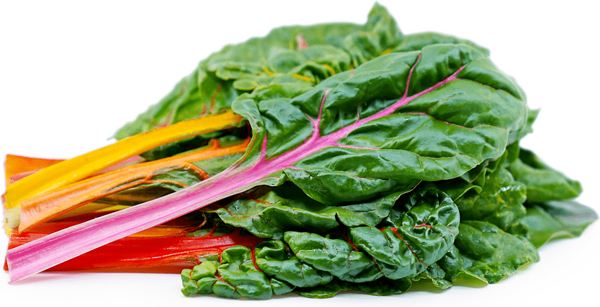 Rainbow Swiss Chard - Pepper Pantry