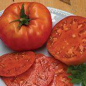 Organic Vine Ripened Beefsteak Tomatoes - 3-Pack - Pepper Pantry
