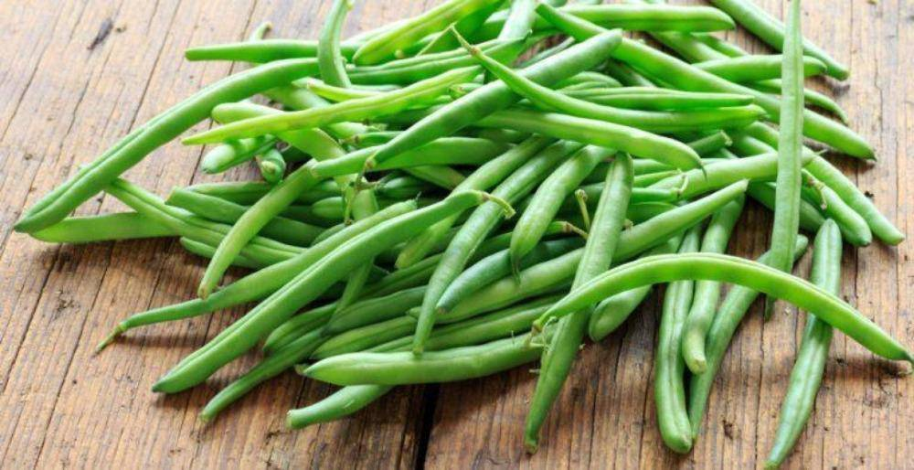 Stringbeans Green Beans - Per Pound - Pepper Pantry