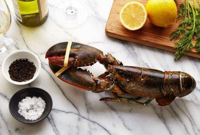 Live Atlantic Lobster (1 1/4 Lb) - Pepper Pantry
