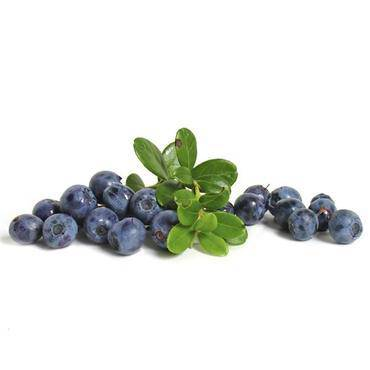 Blueberries Organic - Pepper Pantry