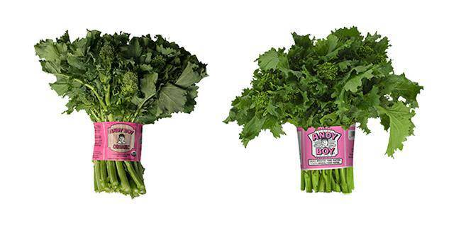 Broccoli Rabe - Andy Boy - Pepper Pantry