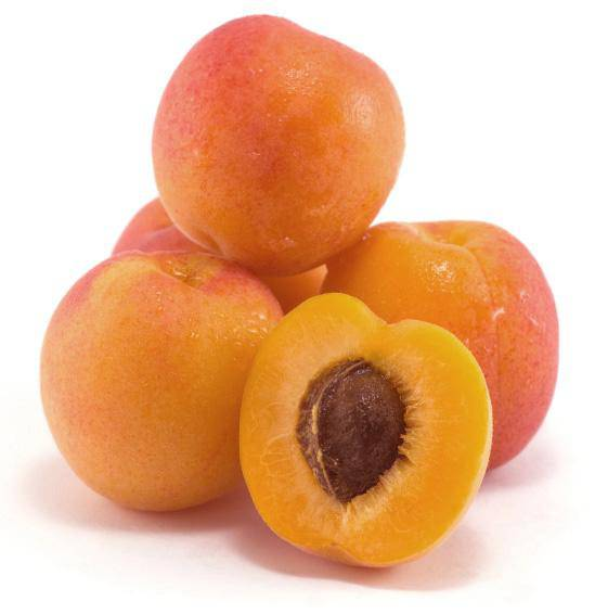 Apricots, Fresh California - Pepper Pantry