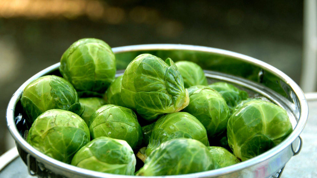 Brussels Sprouts - Pepper Pantry