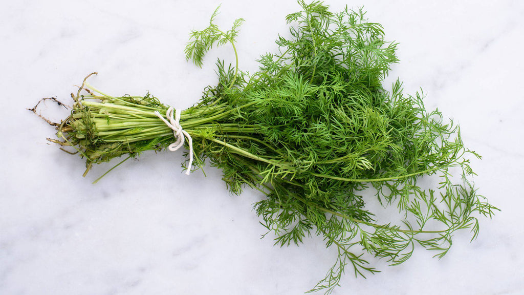 Dill - Pepper Pantry