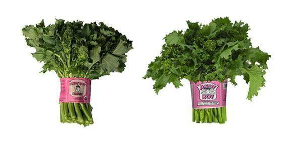 Broccoli Rabe (2 bunch) - Pepper Pantry
